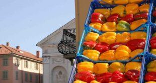Fiera del Peperone di Carmagnola 2016. Foto di Repertorio